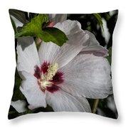 Alabama Wildflower -  Woolly Rose Mallow Throw Pillow