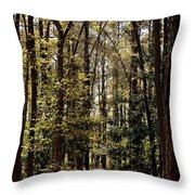 Alabama Woodlands In Spring 2013 Throw Pillow
