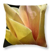 Alabama's Tulip Magnolia Throw Pillow