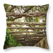 Alamo Walkway Throw Pillow