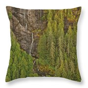 Alaska 8962 Throw Pillow