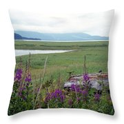Alaska - Juneau Wetlands Throw Pillow