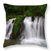 Alaska Paradise Throw Pillow