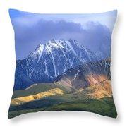 Alaska Range And Foothills Denali Throw Pillow