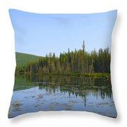 Alaska River Swamp Throw Pillow