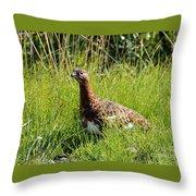 Alaska State Bird Willow Ptarmigan Throw Pillow