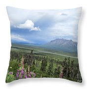 Alaska Through My Eyes Throw Pillow