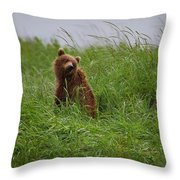 Alaska2010.-brown Beers On The Kenai Throw Pillow