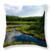 Alaskan Backyard Throw Pillow