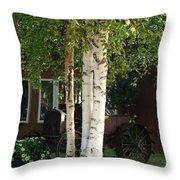 Alaskan Birch Throw Pillow