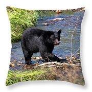 Alaskan Black Bear Hunting In A River Throw Pillow