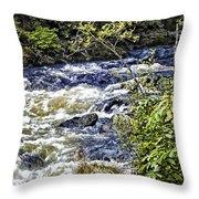 Alaskan Creek - Ketchikan Throw Pillow