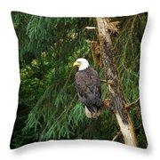 Alaskan Eagle Throw Pillow