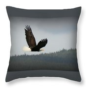 Alaskan Flight Throw Pillow