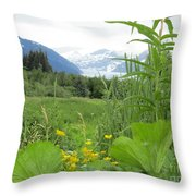 Alaskan Glacier Beauty Throw Pillow