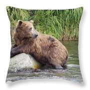 Alaskan Grizzly Throw Pillow