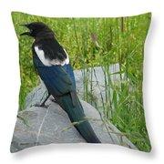 Alaskan Magpie Throw Pillow