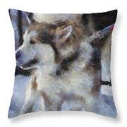Alaskan Malamute Photo Art 09 Throw Pillow
