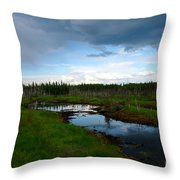 Alaskan Moose 3 Throw Pillow