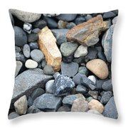 Alaskan Sand II Throw Pillow
