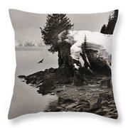 Alaskan Winter Coast Throw Pillow