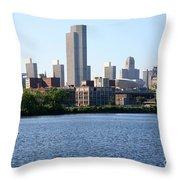 Albany Skyline Throw Pillow