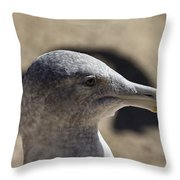 Albatross- Hawaii Throw Pillow