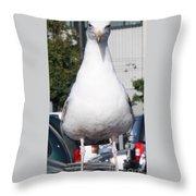Albatross Throw Pillow