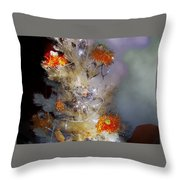 Albero7 Throw Pillow