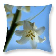 Albino Bluebells 2 Throw Pillow