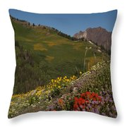 Albion Basin Summer Throw Pillow