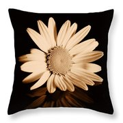 Albumen Daisy Throw Pillow