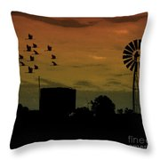 Albury At Night Throw Pillow