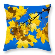 Alchemy Of Nature - Spray Throw Pillow