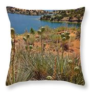 Alcova Desert Throw Pillow