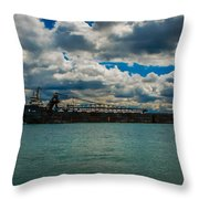 Alcoway Throw Pillow