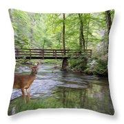 Alert Deer By Bridge In Cades Cove Throw Pillow