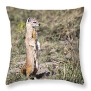 Alert Yellow Mongoose Throw Pillow
