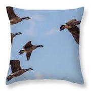 Aleutian Geese Throw Pillow