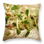 Alfalfa Sprouts Throw Pillow