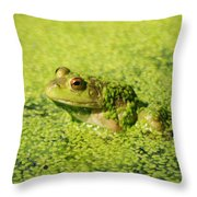 Algae Covered Frog Throw Pillow