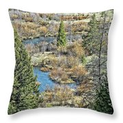 Alice Creek Throw Pillow
