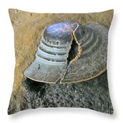 Aliens Who Drink And Drive Throw Pillow