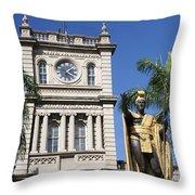 Aliiolani Hale And Kamehameha Throw Pillow