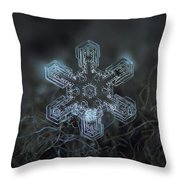 Snowflake Photo - Alioth Throw Pillow