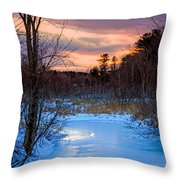 Alive And Well In Maine Throw Pillow