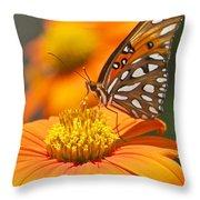 All About Orange 3236 3 Throw Pillow