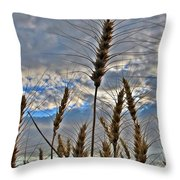 All About Wheat Throw Pillow