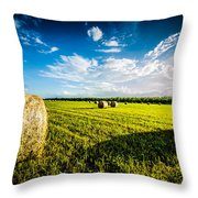 All American Hay Bales Throw Pillow by David Morefield