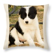 All By Himself At Last Throw Pillow